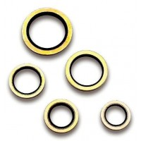 Dowty Seals BSP x 100 (Various Sizes Available)
